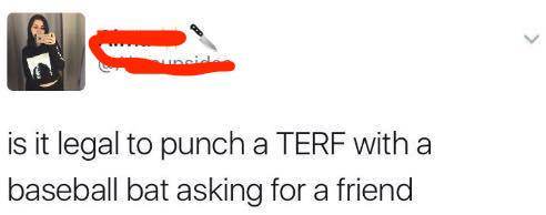 punchterf2