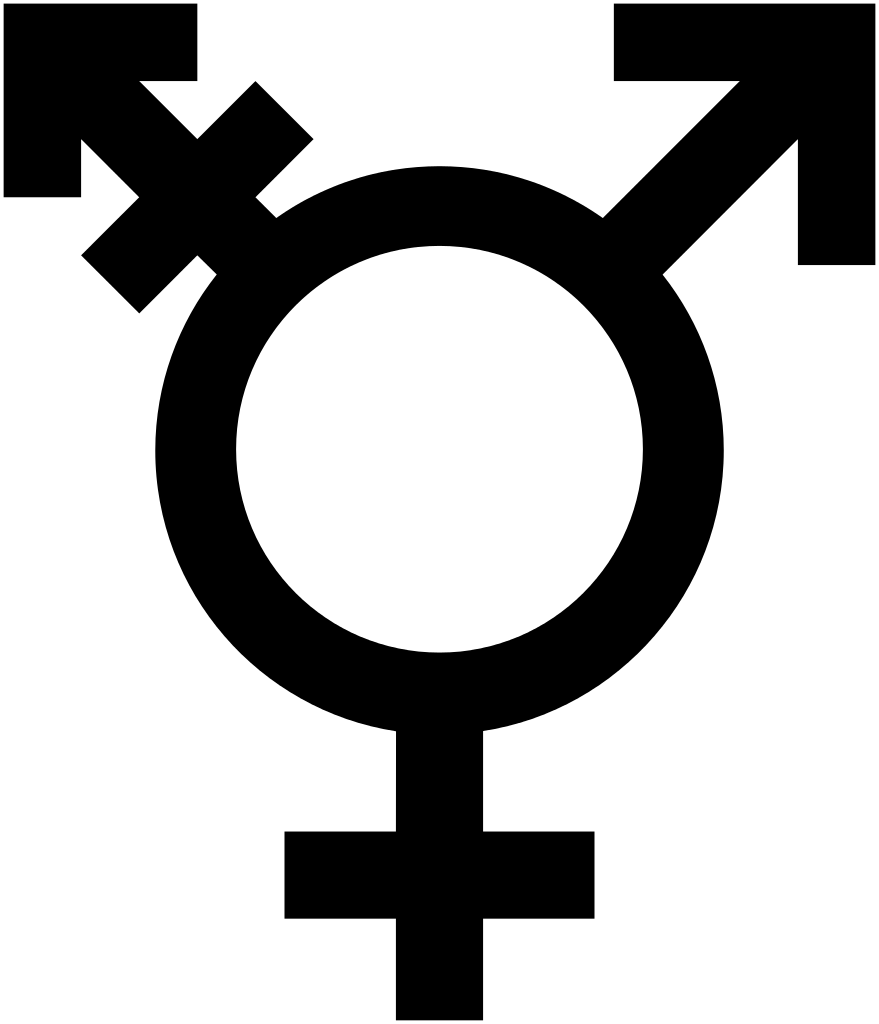 Weird Feminism:  Conversations in Modern Feminism that Make Me Uncomfortable – Part 2: Bridging the Gap Between Trans and TERFS