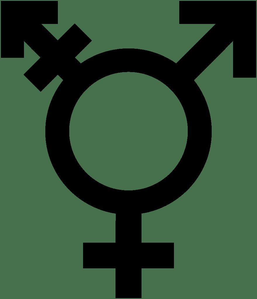 Weird Feminism:  Conversations in Modern Feminism that Make Me Uncomfortable – Part 2: Bridging the Gap Between Trans andTERFS